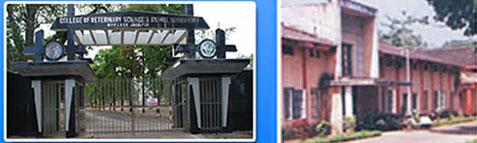 Madhya Pradesh Pashu Chikitsa Vigyan Vishwavidyalaya Results