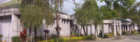 Rajiv Gandhi University Results