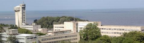 Tata Institute of Fundamental Research Results
