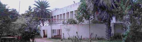 Odisha Joint Entrance Examination Results