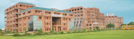 Sharda University Results