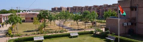 Sardar Patel University of Police, Security & Criminal Justice Results